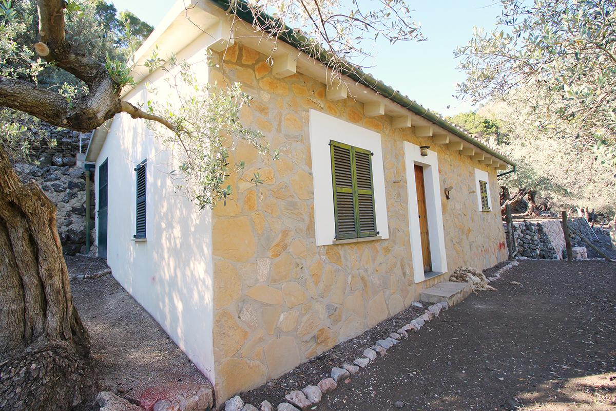 Olivar con casita en un entorno idílico